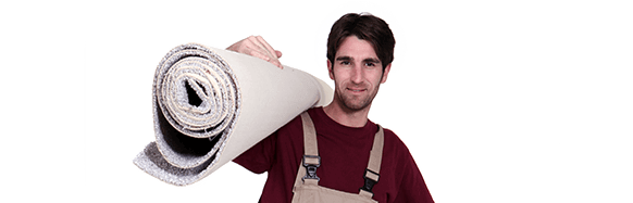 All Boro Carpet Cleaning - Employee