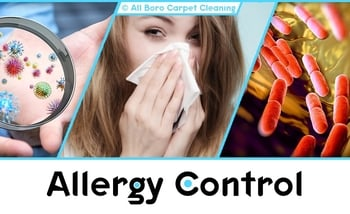 Allergy Control - Manhattan