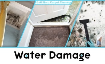 Water and Fire Damage Repair - Manhattan