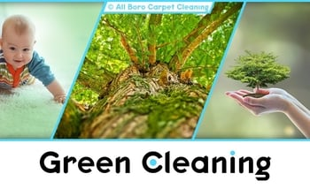 Organic Cleaning - Manhattan